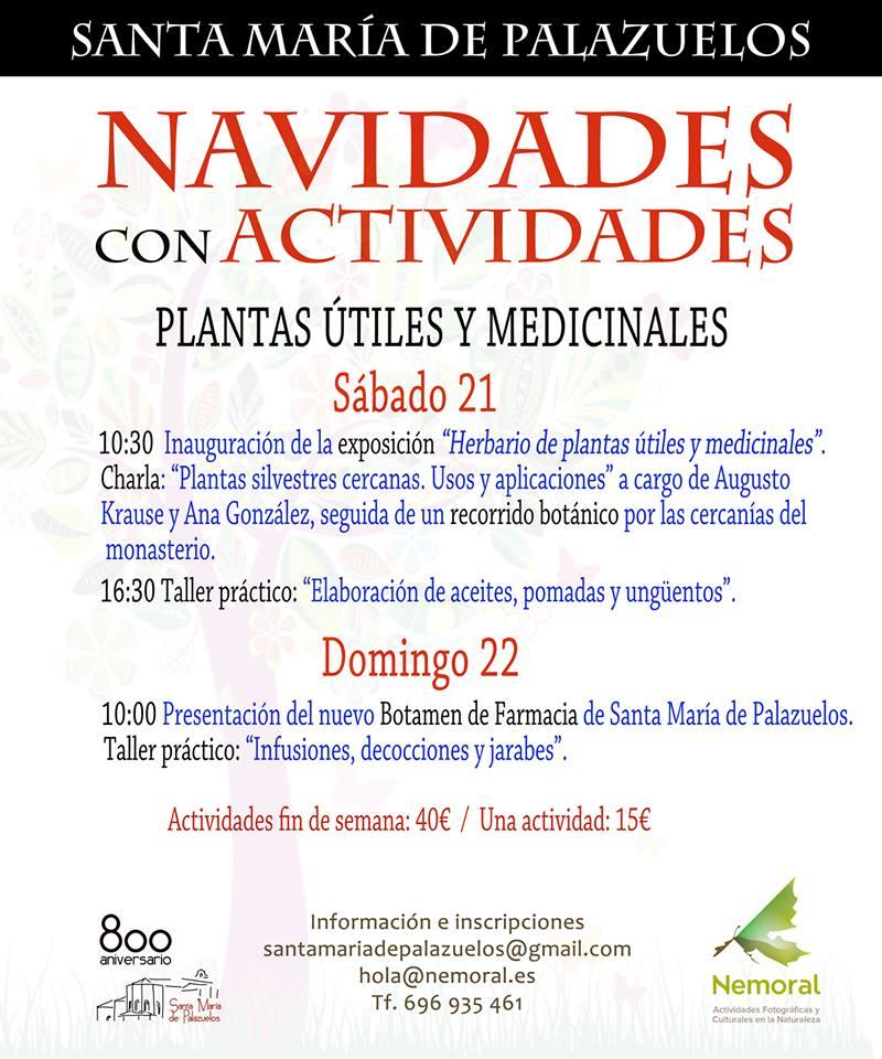 santamariadepalazuelosactividades21-22dic