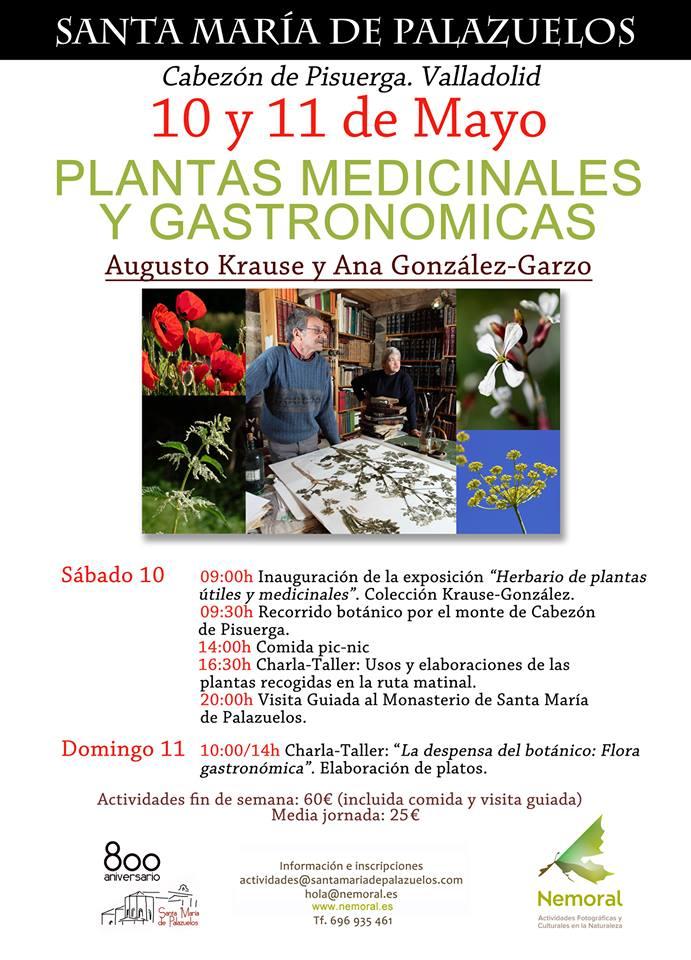 PlantasMedicinalesGastronomicas